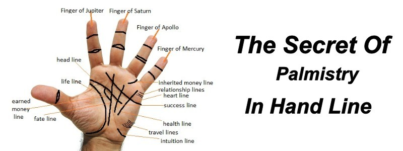 The secrets of palmistry in hand line